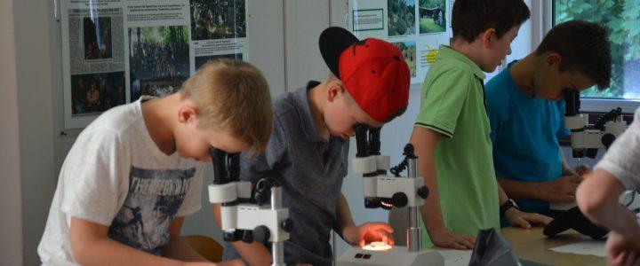 Ausflug der Klasse 5F ins Schulbiologiezentrum und Wildgatter in Hildesheim